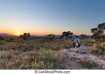 Sunset on the plateau at Blyde River Canyon, famous travel destination in South Africa. One person walking in the bush, rear view.