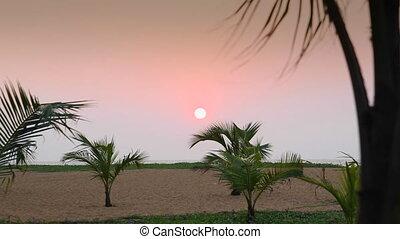 Sunset on the sandy beach