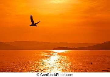 Sunset on the sea - Romantic view of the sunset on sea with...