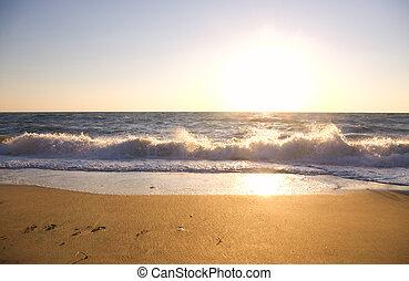 Sunset on the summer beach.