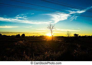 Sunset on to sky light