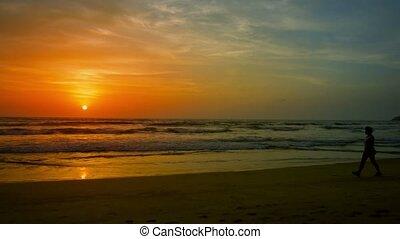Sunset on tropical beach. A woman walks along the water's edge