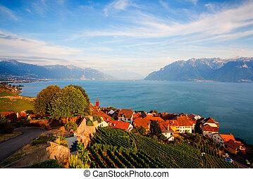 Sunset on vineyards of the Lavaux region over lake Leman (lake of Geneva), Switzerland - HDR Image