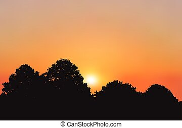 Sunset or sunrise illustration