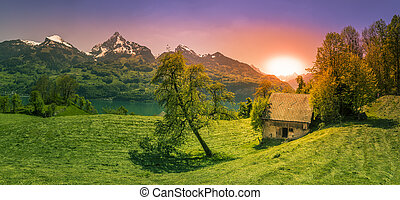 Sunset over a glade in the Alps
