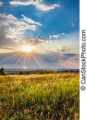 Sunset over a meadow