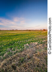 Sunset over autumn fields