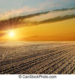 sunset over black field after harvesting