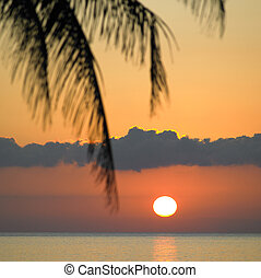 sunset over Caribbean Sea, Maria la Gorda, Pinar del Rio...