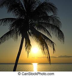 sunset over Caribbean Sea, Maria la Gorda, Pinar del R�o Province, Cuba