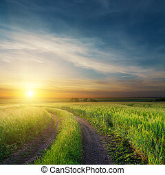 sunset over dirty road in green fields