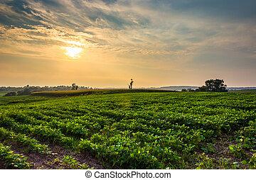 Sunset over farm fields in rural York County, Pennsylvania.