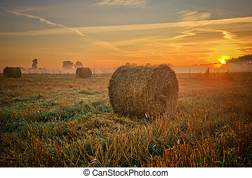 Sunset over field with hay bales