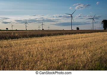 sunset over field with oat and wind turbines