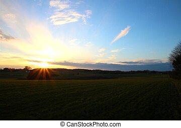 Sunset over grass field