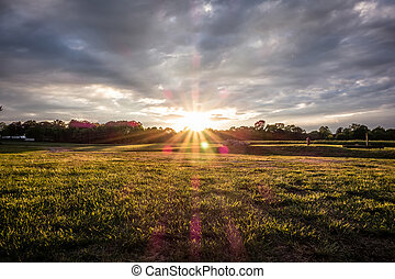 Sunset over green farm field