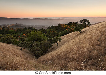 Sunset over hilly California meadow - A beautiful sunset...