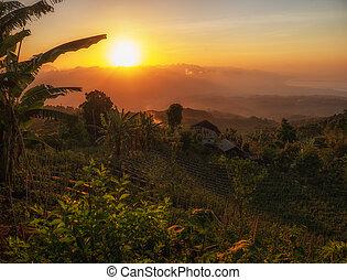 Sunset over Jatiluwih rice terrace, Bali.
