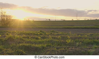 Steady shot of sunset over landscape with empty field