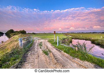 Pink Sunset over dutch nature reserve Onlanden in Drenthe, Netherlands