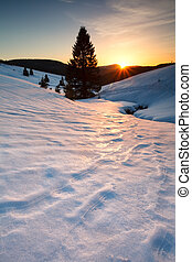 sunset over mountain meadows in snow