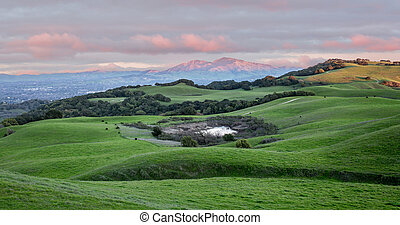 Sunset over Rolling Grassy Hills and Mount Diablo in Northern California
