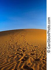 sunset over sand dune