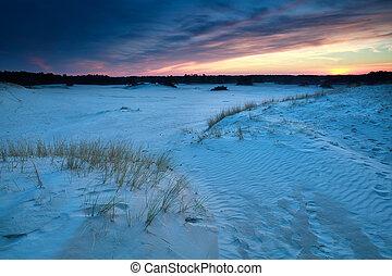 sunset over sand dunes in Gelderland