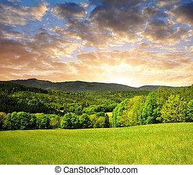 sunset over spring landscape