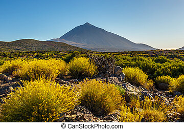 Sunset over Teide volcano in Tenerife, Canary island, Spain