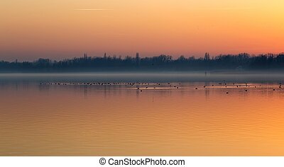 Sunset over the lake Balaton of Hungary with birds