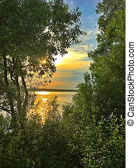 Sunset over the lake. View between the trees of grass.