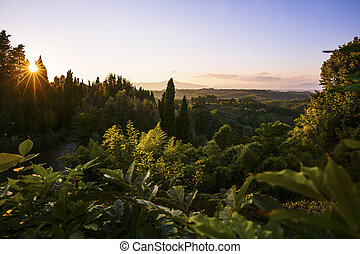 Sunset over the lush landscape in Tuscany