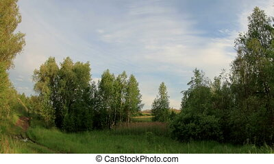 Sunset over the meadow. Syropyatskoe village, Kormilovskiy...