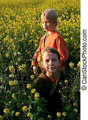 Sunset over the rape - Girls walking through the rape field