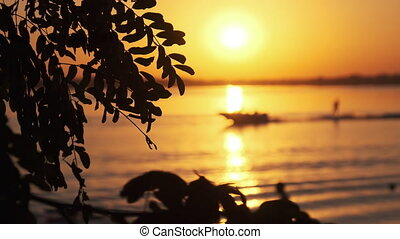 Sunset over the River. Sun Sets through Silhouette of Tree ...