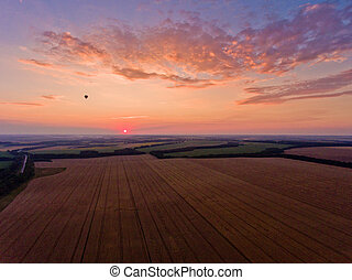 Sunset over the wheat field. Aerial view.