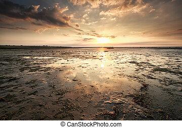 sunset over Wadden sea coast