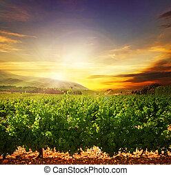 sunset., paisagem, natureza, bonito