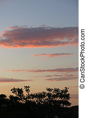 sunset photo as background In Ebro Delta