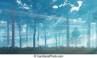 Sunset rays in misty pine forest at dusk 4K - Foggy mystical...
