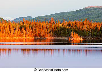 Sunset reflections on boreal forest lake in Yukon - Warm...