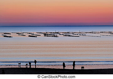 sunset seafront - silhouettes of people on the seafront at...