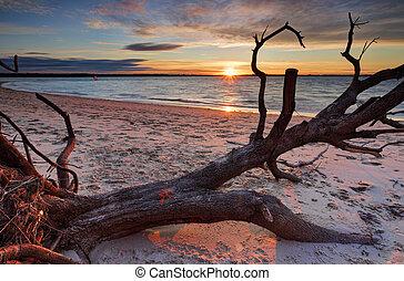 Sunset Silver Beach, Australia