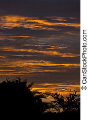 sunset sky dramatic background, colorful twilight sky