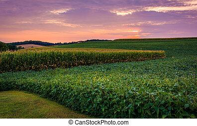 Sunset sky over farm field in rural York County, Pennsylvania.