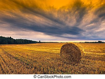 Sunset sky over field with straw bales