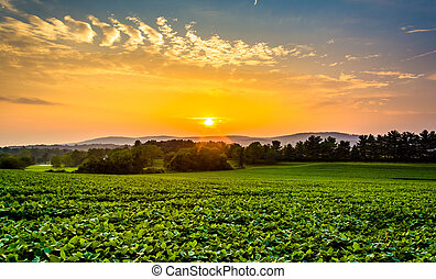 Sunset sky over the Piegon Hills and farm fields, near Spring Grove, Pennsylvania.
