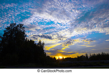 sunset sky setting sun beautiful clouds forest frame