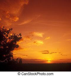 Sunset. - Beautiful orange sunset. No digitally altered.